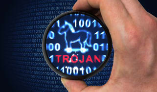 Trojan virus within binary code
