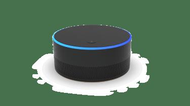 Microsoft's 'Intelligent Speaker'