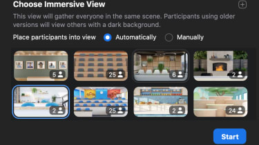 Zoom's Immersive View options