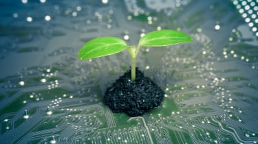 A green plant shoots up from soil which is placed on a circuit board