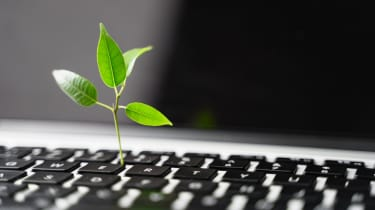A green shoot appearing out of a laptop keyboard  to symbolise carbon footprint and sustainability