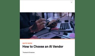AI vendor