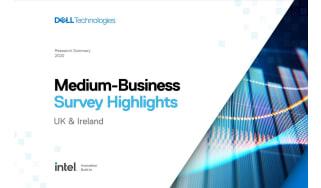 Medium Business Survey Highlights