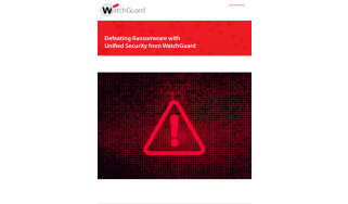 Whitepaper title above a red triangle with an exclamation point inside