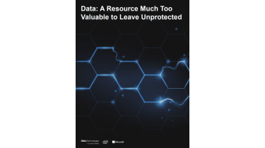 Why you need to protect your data resources - whitepaper