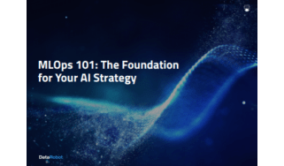 How to build a foundation for AI strategy - whitepaper from DataRobot