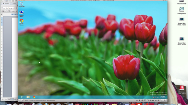 Parallels 8 - Windows on OS X