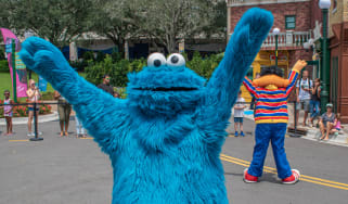 The Cookie Monster