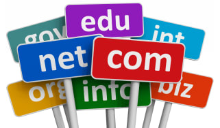 Domain name labels