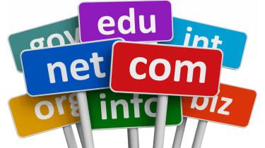 Domain name labels