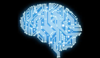Brain with circuits in it