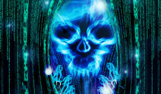 Cyber security skull