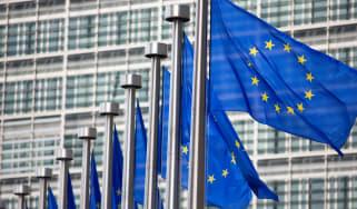 European Union Parliament Flags