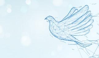 A dove symbolising peace