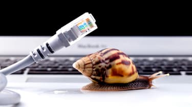 A snail on a laptop next to network cable