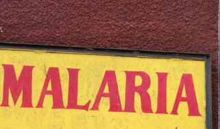malaria sign