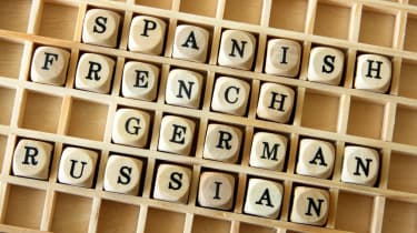 Globalisation is propelling translation software into the limelight.