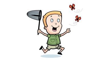 Butterfly in net